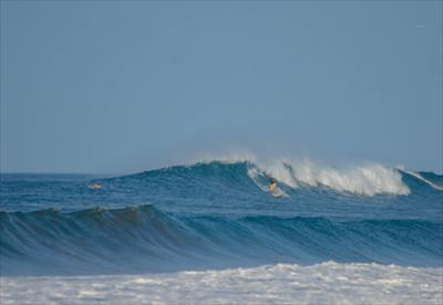 Panga Drops:  Head High,  Clean